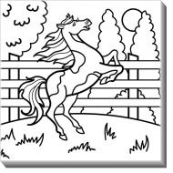 Obrazy, Kôň + farby, 30x30 cm