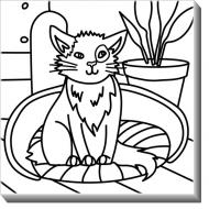 Obrazy, Mačka + farby, 30x30 cm