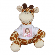 Maskot Žirafa, Váš projekt žirafa