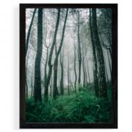 Plagát v ráme, Les, 30x40 cm