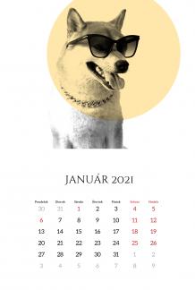 Kalendár, Zvieratá, 20x30 cm